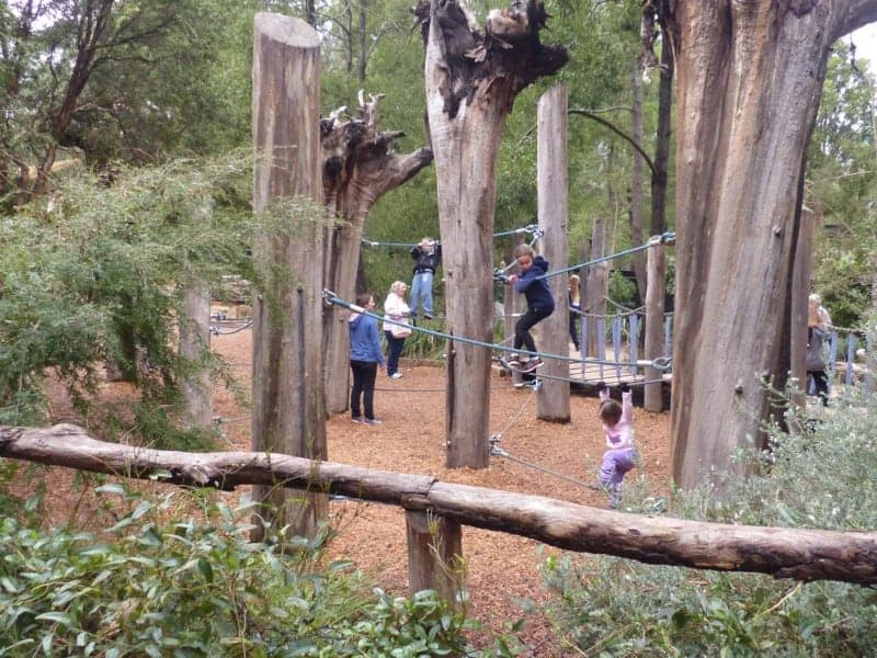 One of Healesville Sanctuary's playgrounds. Just in case all the walking to see the animals isn't enough...
