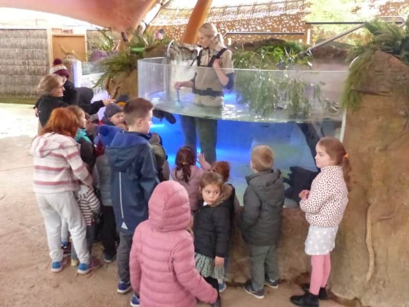 The Platypus show at the Healesville Sanctuary. Our kids were fascinated to see a platypus so close up.
