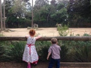 Our review for Melbourne Zoo