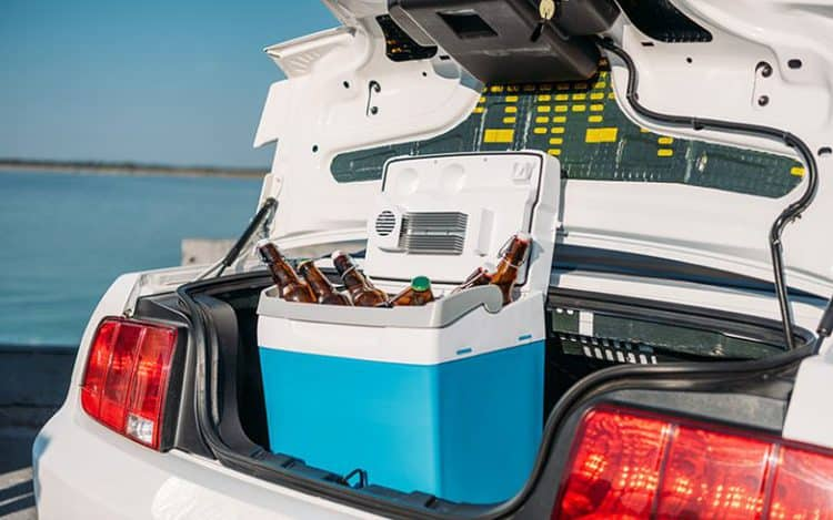 Close Up View Of Portable Fridge With Beer Standing In Car