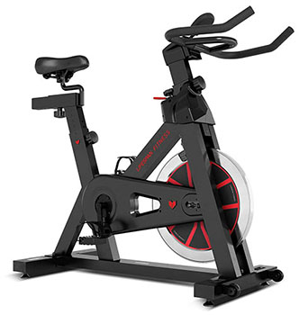 Lifespan Fitness SP-310 Spin Exercise Bike