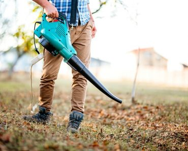 Ultimate Guide To The Best Leaf Blower Australia 2021